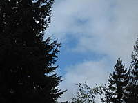 Name: Sky break.jpg Views: 56 Size: 43.8 KB Description: Blue sky break.