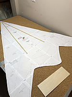 Name: 20180303_193912126_iOS.jpg Views: 39 Size: 563.1 KB Description: Possible placement of reinforcement since I am going to use two pieces of 6mm depron. The sheets will be attached around the CG point. I will also put a carbon rod across near the rear of the dowels