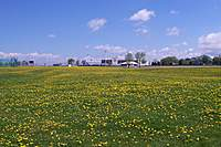 Name: 100_2479.jpg