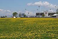 Name: 100_2482.jpg