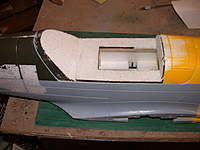 Name: canopy mod (1).jpg