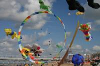Name: 195-9526_IMG.jpg Views: 261 Size: 69.1 KB Description: Dutchies like Kites!!!!