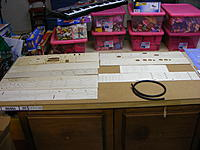 Name: 2012_0121N170002.jpg Views: 316 Size: 227.2 KB Description: All spread out.