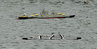 Name: 2010.10.24.0056.WBOP.jpg