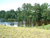Name: DSCF0015.jpg Views: 37 Size: 301.0 KB Description: Flooded Glasslands & Tree Line...