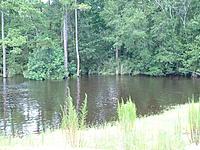 Name: DSCF0016.jpg Views: 37 Size: 305.6 KB Description: Closer Look at Flooded Glasslands & Tree Line...