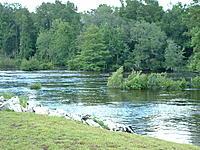 Name: DSCF0018.jpg Views: 43 Size: 285.9 KB Description: Flood Waters Path & North Banks Flooded Tree Line...