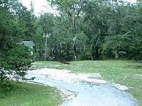Name: DSCF0034.jpg Views: 32 Size: 293.3 KB Description: Flooded Tree Line of Same Residence...