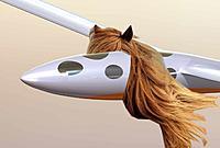 Name: maned_glider.jpg Views: 12 Size: 53.2 KB Description: