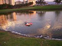 Name: 000_0637.jpg Views: 116 Size: 92.9 KB Description: LO trajo una hora en el agua