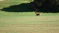 Name: DSC00161.jpg