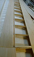 Name: small P1000400.jpg