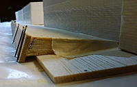 Name: small P1000416.jpg