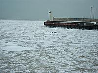 Name: 2 22 13 8.jpg