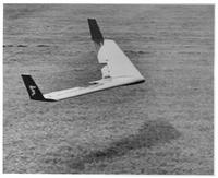 Name: Icarosaur.jpg