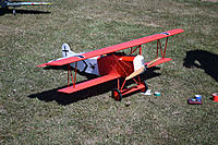"""Name: Warbirds Over LOS-11.jpg Views: 23 Size: 1,001.2 KB Description: Mike's Fokker DVII with it's first prize """"gong""""."""