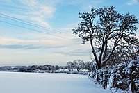 Name: snowjan10.jpg Views: 59 Size: 49.5 KB Description: