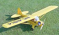 Name: Cub26reduced.jpg