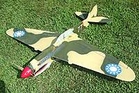 Name: P-40 Warhawk 7-6-10 - New- (22).jpg