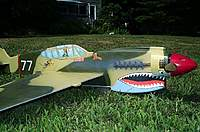 Name: P-40 Warhawk 7-6-10 - New- (24).jpg