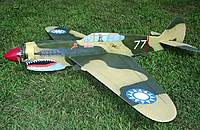 Name: P-40 Warhawk 7-6-10 - New- (21).jpg