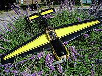 Name: P9210015.jpg Views: 94 Size: 79.4 KB Description: Yak 55 39-inch