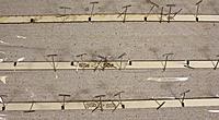 Name: 12-Splicing keel & longerons.jpg Views: 635 Size: 301.7 KB Description: Splicing the bottom keel (top) and the 2 full-length longerons (or side stringers)