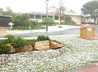 Name: 1a.jpg