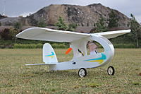 Name: Beeker Maiden.jpg Views: 380 Size: 621.5 KB Description: Ready to commit aviation!