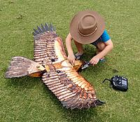 Name: IMG_20160115_120635065_2.jpg