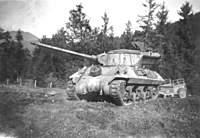 Name: TANK1.jpg Views: 519 Size: 69.7 KB Description: My fathers tank.