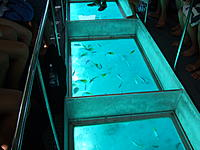Name: DSCF3082.jpg