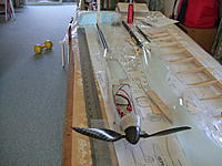 Name: DSCF9558.JPG