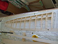 Name: DSCF9559.JPG