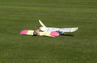 The World-Class Wingo Pylon races saw many casualties!