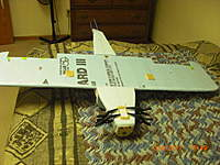Name: CIMG0191.jpg