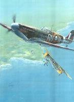 Name: spitfire and bailing 109.jpg Views: 573 Size: 77.0 KB Description: