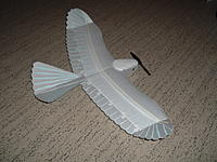 Name: DSCF1665.jpg