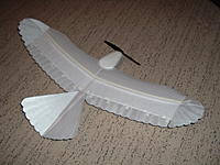 Name: DSCF1668.jpg Views: 82 Size: 122.0 KB Description: some sweep forward like the real bird.