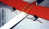 Name: condor.jpg
