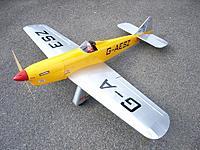 Name: Sparrow Hawk 2.JPG Views: 3 Size: 106.6 KB Description: