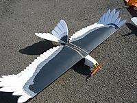 Name: Eagle3.JPG Views: 29 Size: 128.1 KB Description: Old 2408-21, quite a fair bit of down thrust.