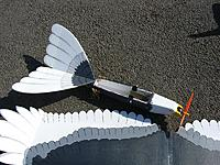 Name: Eagle1.JPG Views: 28 Size: 113.2 KB Description: 2 piece wing, 20oz flying.