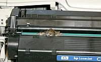 Name: PrinterMouse.jpg Views: 57 Size: 30.8 KB Description: