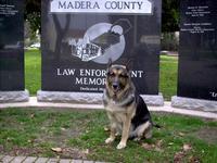 "Name: IMAG0202.jpg Views: 302 Size: 111.8 KB Description: viking at The ""Law Enforcement Memorial"""