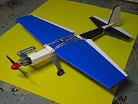 Name: Blue Heeler.jpg