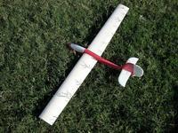Name: DSCN0035.jpg Views: 1040 Size: 96.3 KB Description: 1 metre wing span, fully moving horizontal stab.