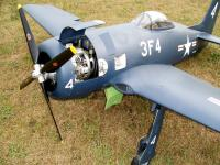 Name: Bearcat.jpg