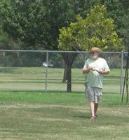 Name: Pond Flies.jpg