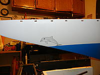 Name: Porpose.jpg